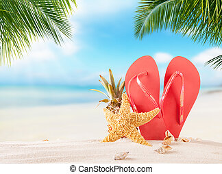 קיץ, פליפפלופס, ב, חוף חולי