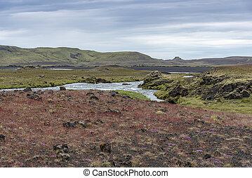 קיץ, צבעים, איסלנד