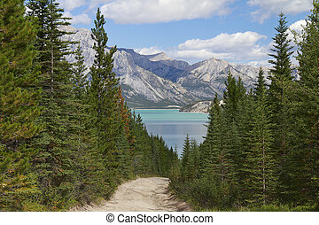 קנדה, הר, להוביל, -, אגם, פגר, אלברטה