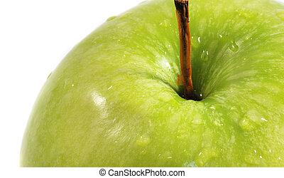 קרוב, רטוב, , תפוח עץ