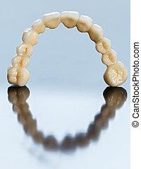 קרמי, שיניים, -, של השיניים, גשור
