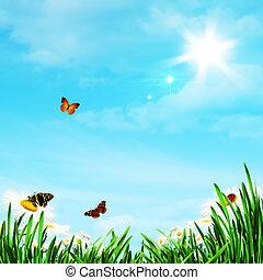 רקעים, תקציר, פרחים, טבעי, חיננית