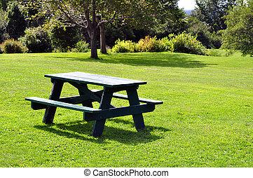 שולחן של פיקניק