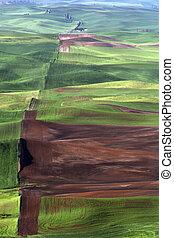 שטח חקלאי, פאלאוס