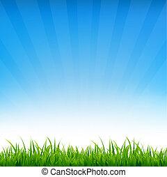 שמיים כחולים, עם, דשא