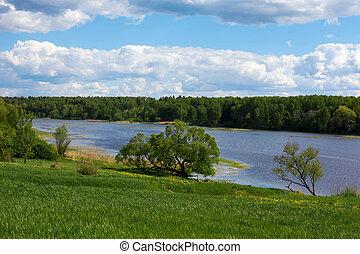 שמיים כחולים, clouds., river., יער, בנקים, לבן