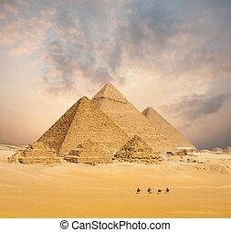 שקיעה, כל, מצרי, פירמידות, גמלים, מרוחק, רחב
