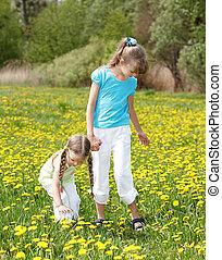 תחום, flower., ילדים
