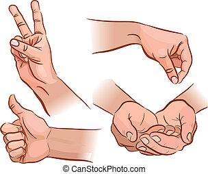 תנועות, ידיים