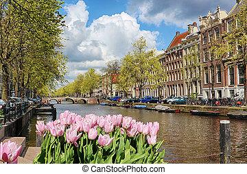 תעלה, ב, ה, עיר עתיקה, של, אמסטרדם, הולנד