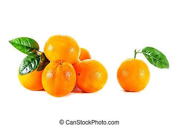 תפוז, בשל