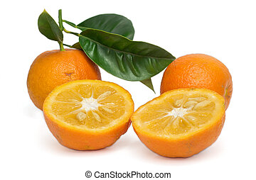 תפוז, לבן, מר