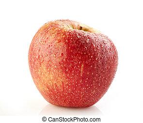 תפוח עץ, אדום, רטוב