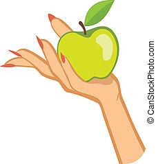 תפוח עץ, אישה, דוגמה, יד מחזיקה, .vector