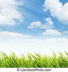 תקציר, טבעי, רקעים, עם, קיץ, עלווה, ו, מואר, sunl
