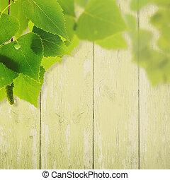 תקציר, קיץ, ו, קפוץ, רקעים, עם, עלווה, ו, גדר מעץ