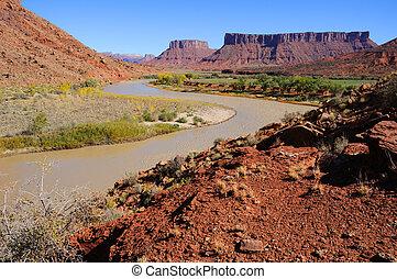 あてもなくさまよいなさい, 中に, コロラド川, 近くに, 砂漠リゾート