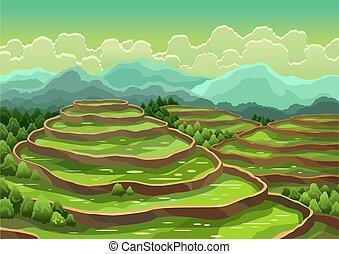 ∥あるいは∥, シリアル, 稲田, 風景, バックグラウンド。, 収穫する, 田園, terraces., 農業, お茶, アジア人