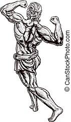 ∥あるいは∥, ローマ人, ギリシャ語, 古代, 人, 強い