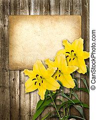 ∥あるいは∥, 招待, ユリ, カード, 黄色の花, お祝い