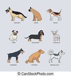 いたずら書き, ベクトル, セット, 犬, 品種