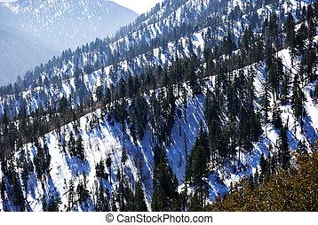 おおわれる 雪, 山