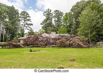 おろされる, 木の家