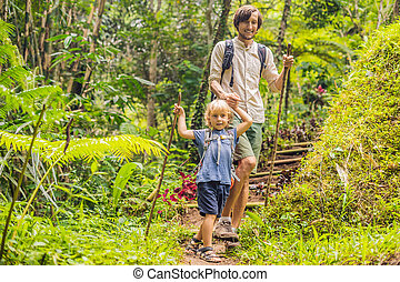 お父さん, ステッキ, 家族, hiking., 息子, 森林, 移住