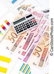 お金。, ブラジル人, 財政の図表, datasheet.