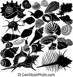 かたつむりの貝