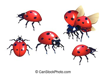 かぶと虫, 黒, 飛行, てんとう虫, 昆虫, 赤い点