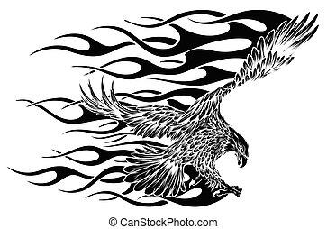 から, ワシ, 黒, 飛行, バックグラウンド。, 白, ∥そ∥, ワシ, feather., 広がり