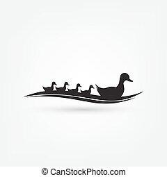 かわいい, グラフィック, 動物, 自然, くちばし, イラスト, 図画, 鳥, ベクトル, 背景, アヒル, 白, ...