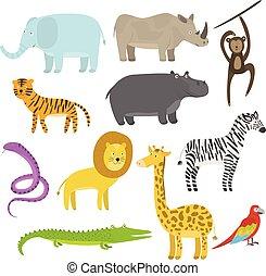 かわいい, セット, 動物, 平ら, トロピカル, ジャングル, 漫画