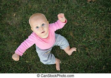 かわいい, モデル, 見る, カメラ, 女の赤ん坊, 草
