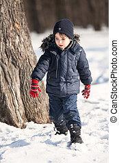 かわいい, 公園, 冬, 男の子
