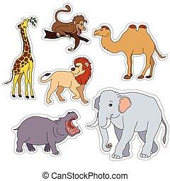かわいい, 動物, セット, 隔離された, イラスト, animals., ベクトル, 様々, サファリ, 白, ステッカー