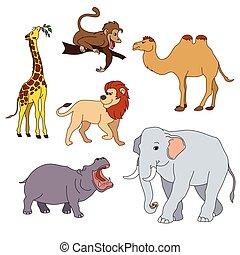 かわいい, 動物, セット, 隔離された, イラスト, animals., ベクトル, 様々, サファリ, 白