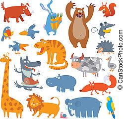 かわいい, 動物, 動物園