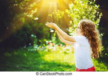 かわいい 女, 保有物, 若い, 緑のプラント, 中に, sunlight.