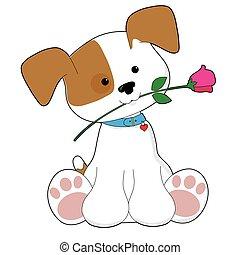 かわいい, 子犬, バラ