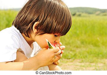 かわいい, 小さい 男の子, スイカを食べること, 芝生に, 中に, 夏