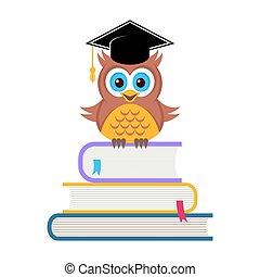 かわいい, 帽子, 卒業, フクロウ