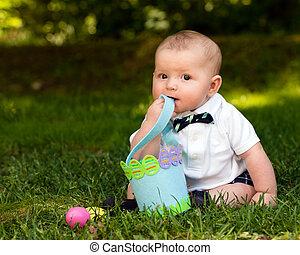かわいい, 幼児, 男の子, 卵, 赤ん坊, バスケット, イースター, 遊び