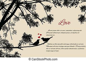 かわいい, 恋人, 鳥, 情事