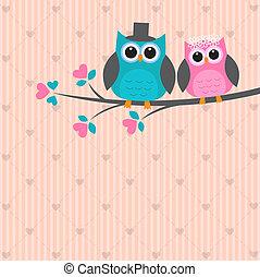 かわいい, 愛, 2, フクロウ