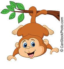かわいい, 掛かること, 木, サル, branc