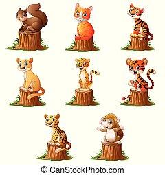かわいい, 木, 丸太, 動物