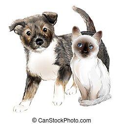 かわいい, 犬, ねこ, friends., 肖像画, kitten., 子犬, タイ人