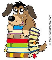 かわいい, 犬, 上に, 本の山